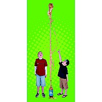 Geyser Tube in a Blister Card