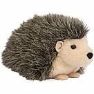 Hillary Hedgehog