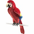 Macaw, Scarlet Hand Puppet