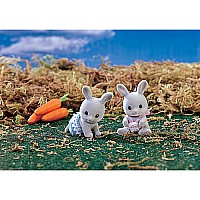 Cottontail Rabbit Twins