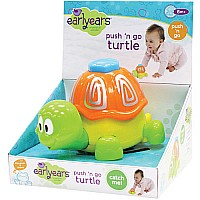 PUSH N GO Turtle