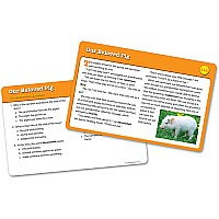 Reading Comprehension Card Sets - gr 5