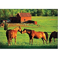 0200 PC Kissing Horses Cardboard Jigsaw