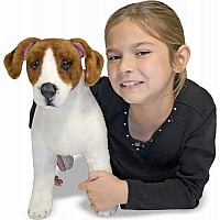 Jack Russell Terrier  Plush