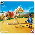 Knabstrupper Horse With Trainer and Stable