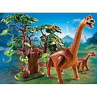 Brachiosaurus With Baby