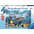Caribbean Smile Dolphin Puzzle