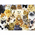 Cat Pride 100 Piece Puzzle