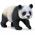 Giant Pandabear, Female