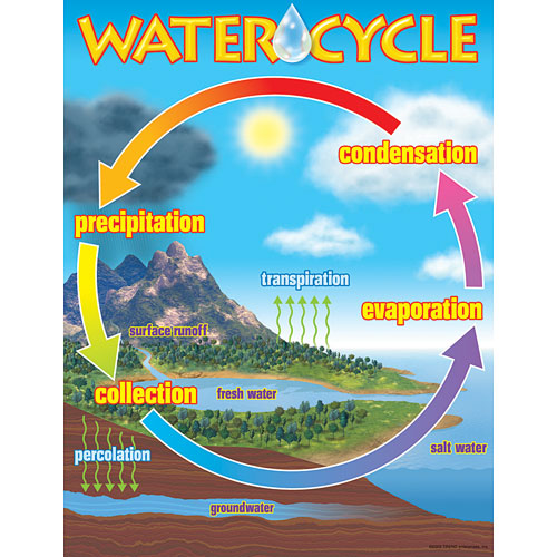 The water cycle chart kool child the water cycle chart ccuart Gallery