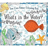 What's in the Water?-NEW