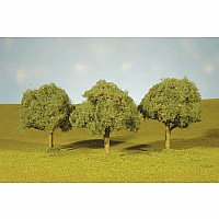 "3""-3.5"" Oak Trees (3 Per Box)"
