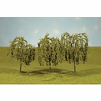 "3 - 3.5"" Willow Trees"