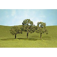 "2""- 2.25"" Walnut Trees (4 Per Box)"