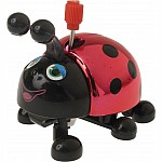 Lori the Lady Bug