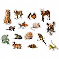 Pets: Photographic Shape Stickers