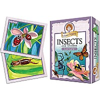 Prof. Noggin's Insects and Spiders