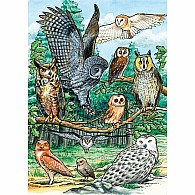 35 pc Tray Puzzle North American Owls