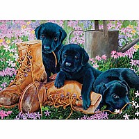 Black Lab Puppies (tray)