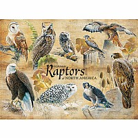 Common Raptors - 1000 PIeces