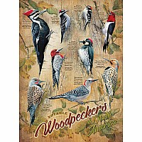 Notable Woodpeckers - 500 Pieces