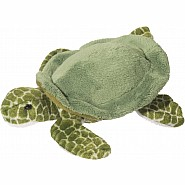 Tillie Turtle