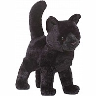 Midnight Blk Cat