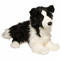 Dog, Border Collie - Chase 16""