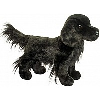 Jett Flat Coated Retriever