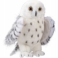 Bird, Snowy Owl - Legend