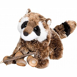 Patch Racoon