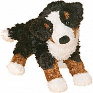 BERNESE MOUNTAIN DOG - MIRANDA
