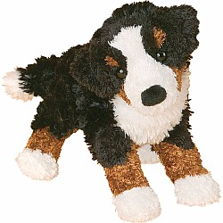 MIRANDA BERNESE MTN DOG