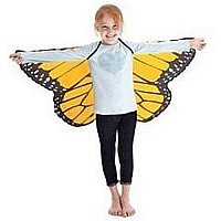 Or Mon Butterfly Wings