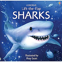 Sharks Lift-the-Flap