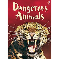 Dangerous Animals (Level ?) IR