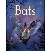 Bats Internet-Referenced