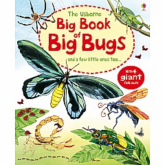 Big Book Of Big Bugs (Ir)