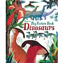 Big Picture Book Dinosaurs (Ir)