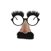 Groucho Glasses