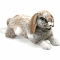 Rabbit, Holland Lop Hand Puppet