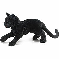 Black Cat Hand Puppet