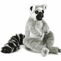 Lemur, Ring-Tailed