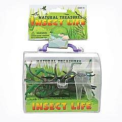 Insect Life Natural Treasure Box