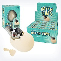 Hatch'ems Penguin Eggs