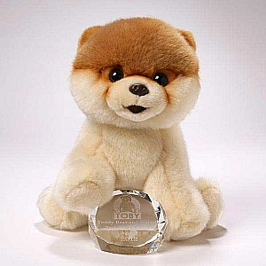 Boo - The World'S Cutest Dog by Gund