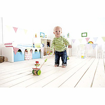 Dancing Butterflies Push Toy