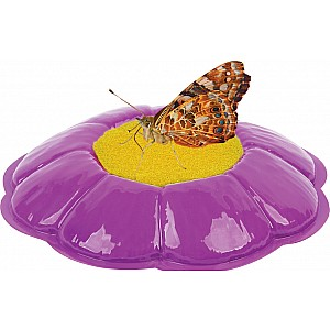 Butterfly Garden® Homeschool Edition
