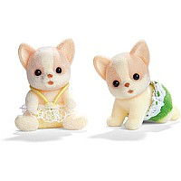 Chihuahua Dog Twins