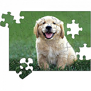 0030 PC Golden Retriever Puppy Cardboard Jigsaw